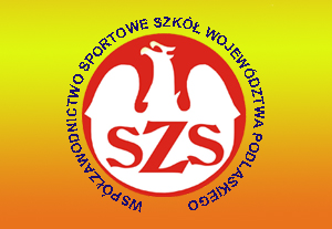 Współzawodnictwo Sportowe Szkół V-VI.2021